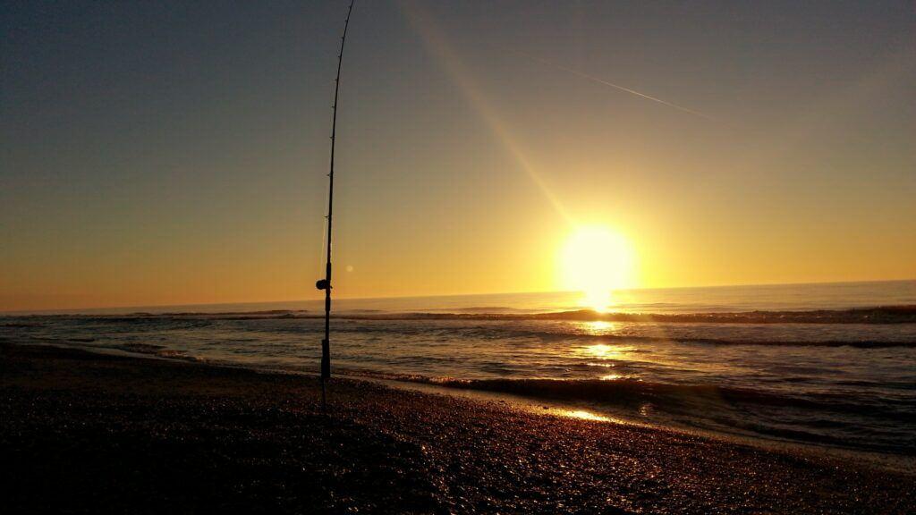 Intro to beach fishing