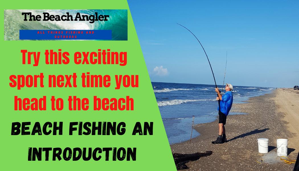 beach fishing introduction
