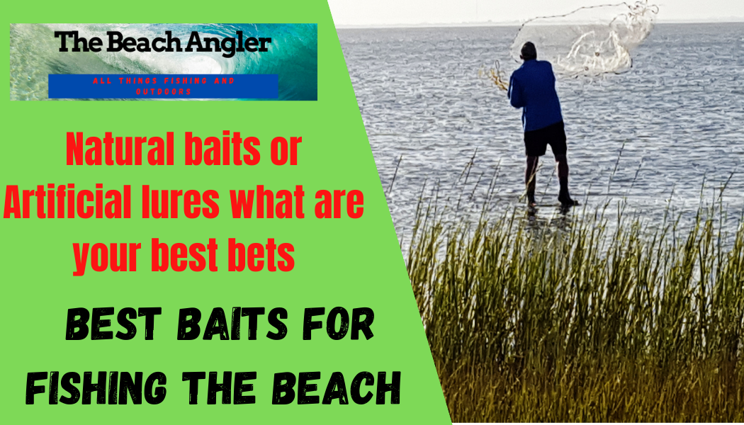 best baits for beach fishing