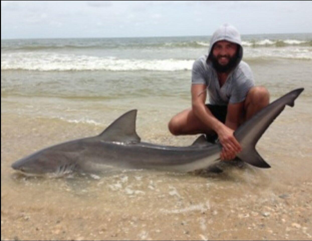 Bull shark caught from the beach