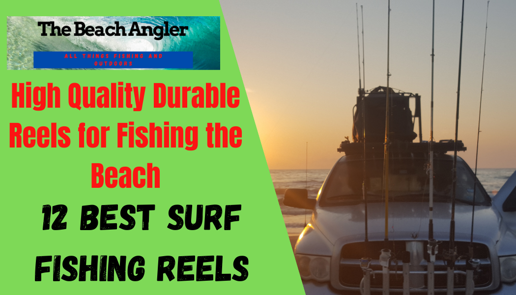 12 BEST SURF FISHING REELS