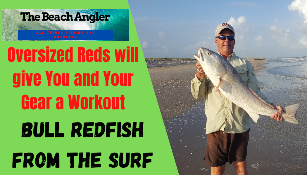 Bull Redfish from the surf