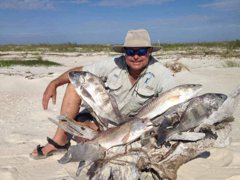 redfish and black drum caught on fishbites