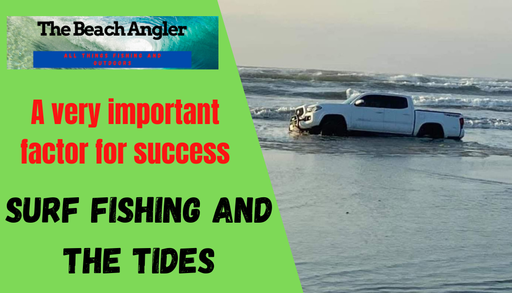 surf fishing and the tides