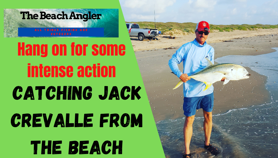 catching Jack Crevalle from the beach