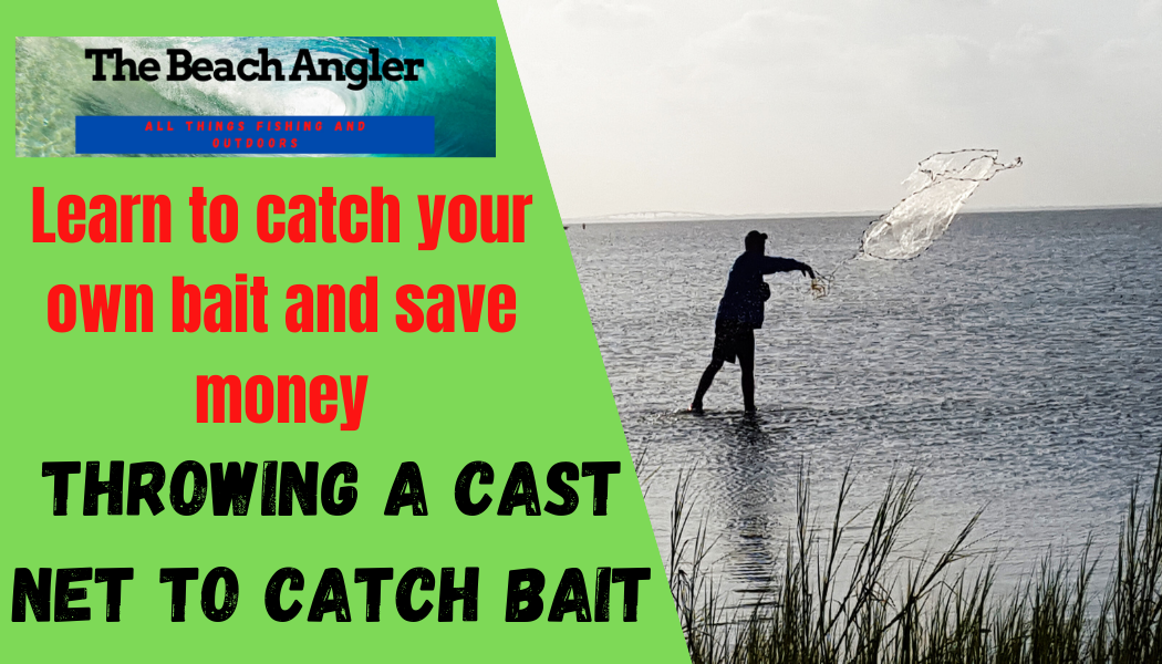 throwing a cast net to catch bait