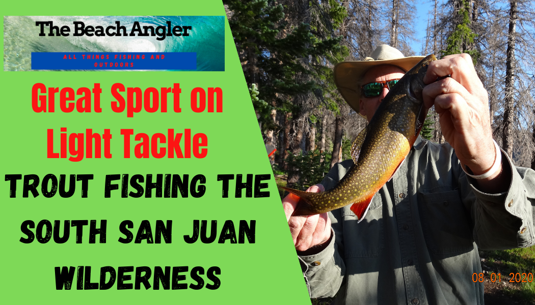 trout fishing the south san juan wilderness of colorado