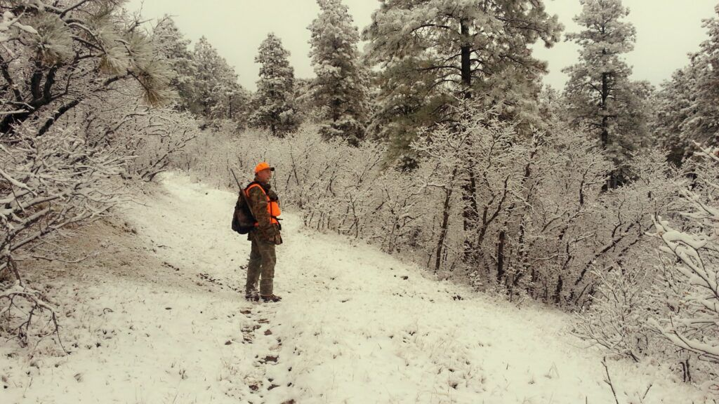 snowy trail - outfitting a colorado elk hunt