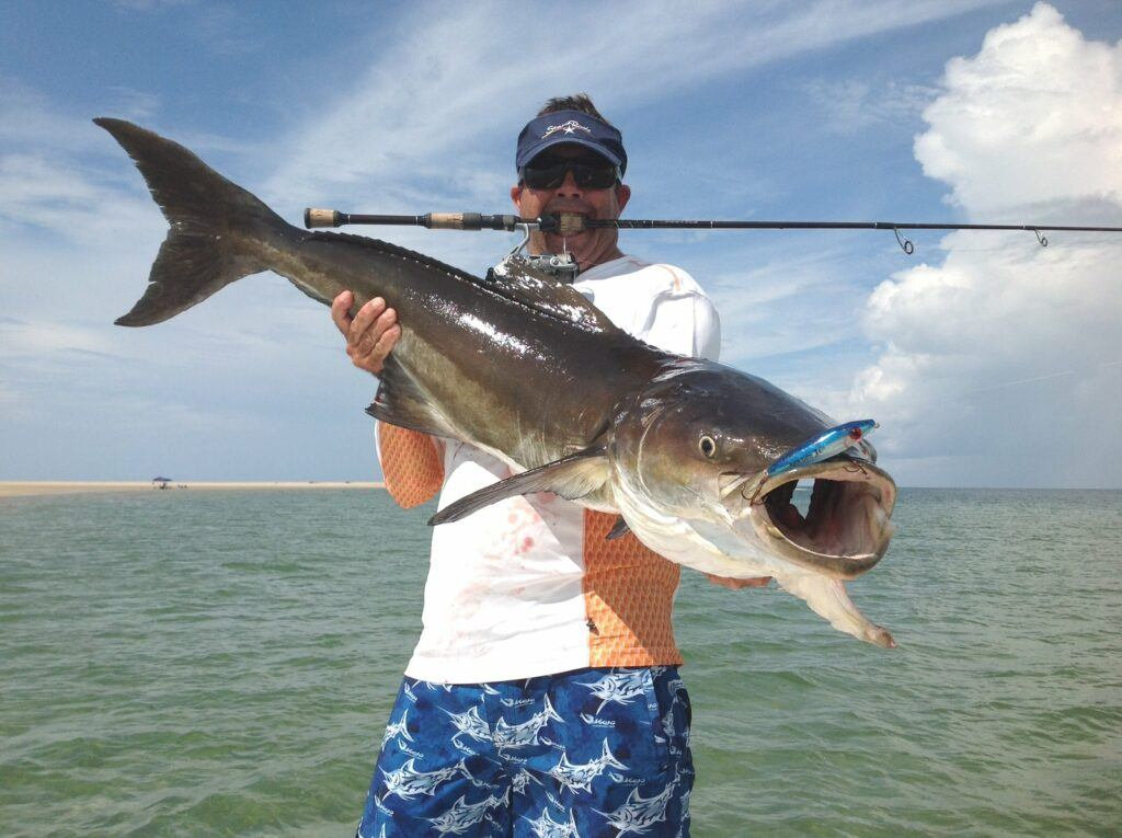 Cobia caught from the surf. Surf Fishing Quick Start Guide Review