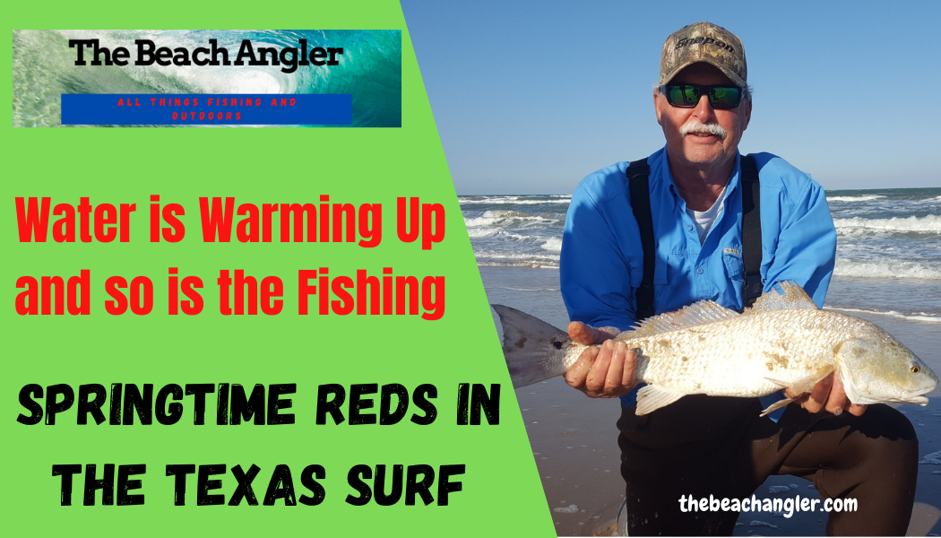 Springtime Redfish in the Texas Surf