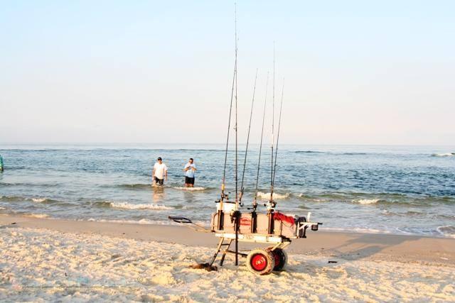 berkley jumbo fishing cart on the beach and loaded