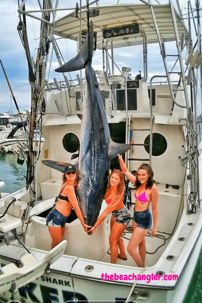 Three young ladies with a huge Mako Shark