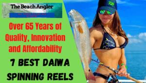 Daiwa Spinning Reels review